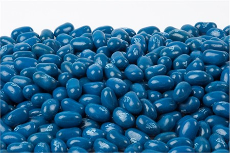 Jelly Belly Blueberry jelly beans (1 Pound Bag)