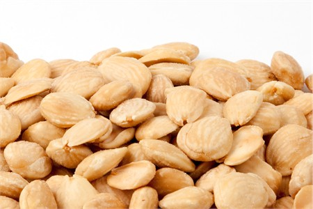 Salted Marcona Almonds (1 Pound Bag)
