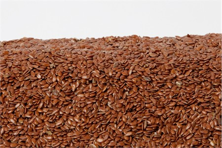 Organic Flax Seeds (1 Pound Bag)