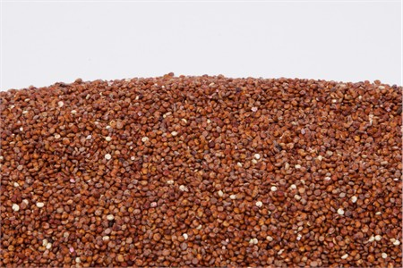 Organic Red Quinoa (1 Pound Bag)