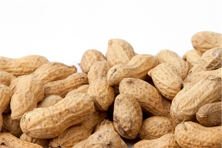 Raw In-Shell Peanuts (10 Pound Case)