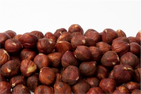 Roasted Oregon Hazelnuts / Filberts (1 Pound Bag)